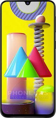 DAS du Samsung Galaxy M31